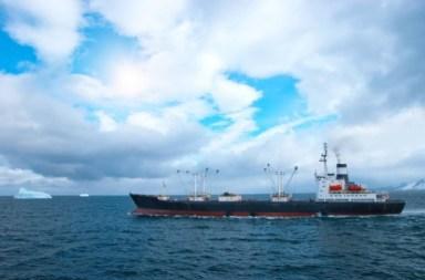 antarktiki-alieia
