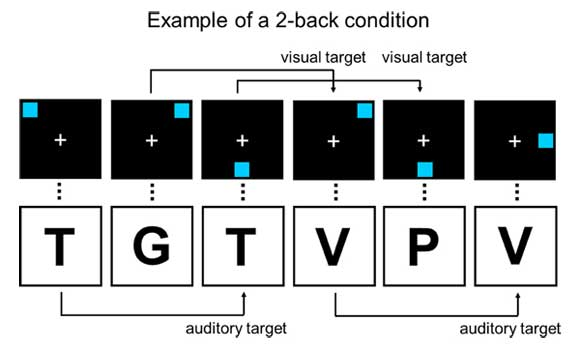 increase iq with dual n-back