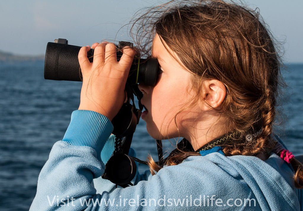 12 Expert tips on choosing binoculars for birding and wildlife observation