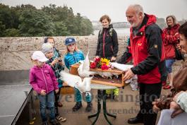 Magdeburger Kulturnacht | Friedenstauben steigen auf