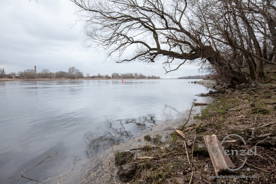 Ein Spaziergang an der Elbe