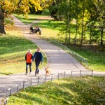 Herbst im Rotehornpark Magdeburg