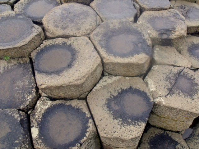 stepping stones at Giant's Causeway