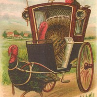 Thanksgiving Travels - Irish Blessings For A Safe Journey
