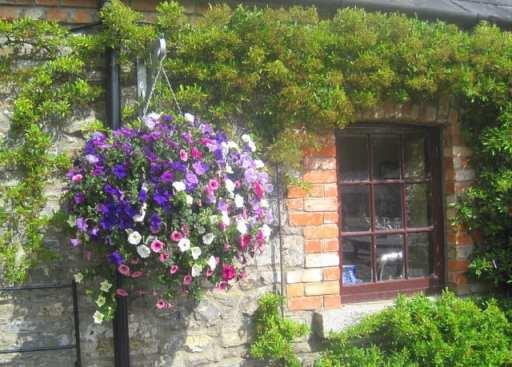 Flower Baskets Dublin : The beauty of ireland s flower baskets irish american mom