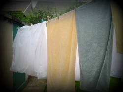 Towels on the washing line