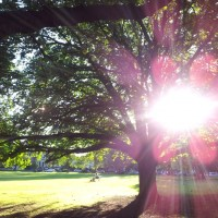Loving the sun #potd