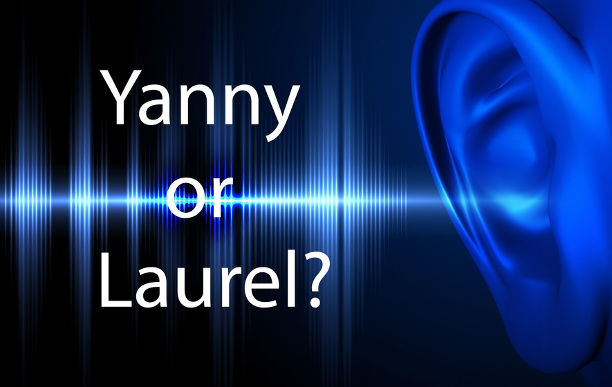 Yanny or laurel  Experts give their view on the puzzling audio clip     The internet is having a meltdown
