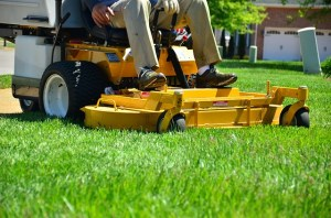 grass upkeeping