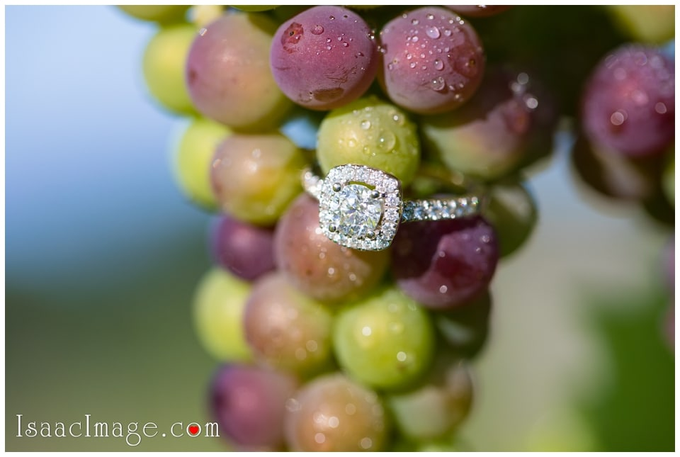Bonnieheath estate lavender winery Engagement_3398.jpg