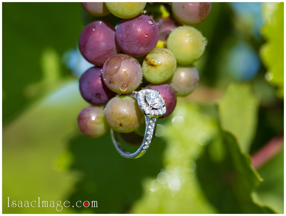 Bonnieheath estate lavender winery Engagement_3399.jpg