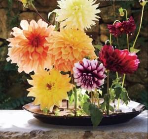Decori con i fiori