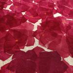 Tessuto dipinto a mano Chiara Grifantini