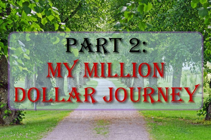 Part 2: My Million Dollar Journey