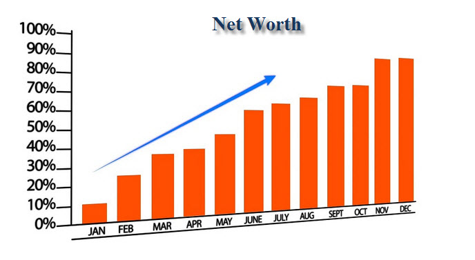Net Worth Performance