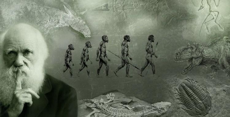 Evolución vs Islam