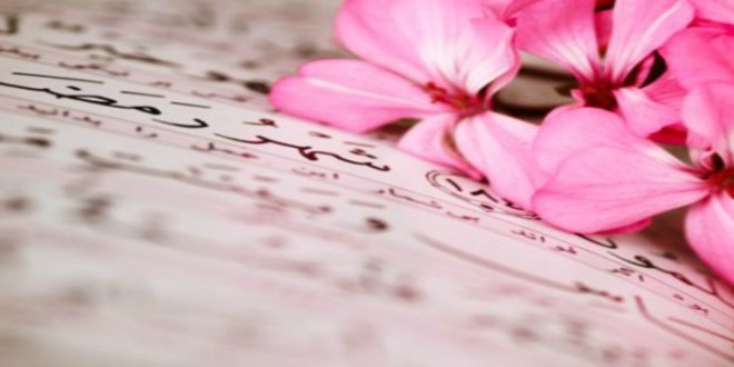 flowers-ramadan666