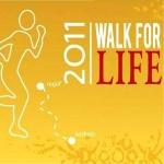 six_north_americans_walk_najaf_karbala_khalfan