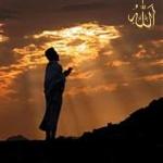 ultimate_beloved_redha