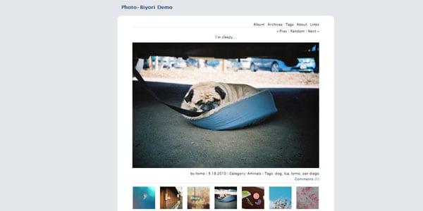 Photo-blog theme