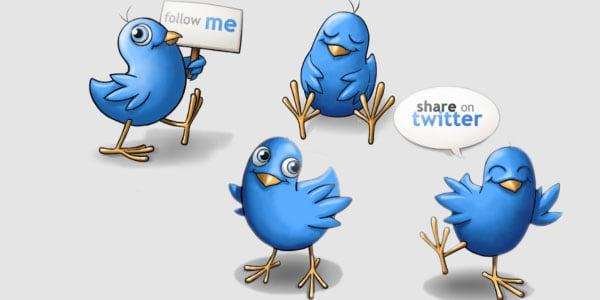 happy twitter birds
