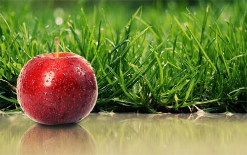 Apple wallpaper