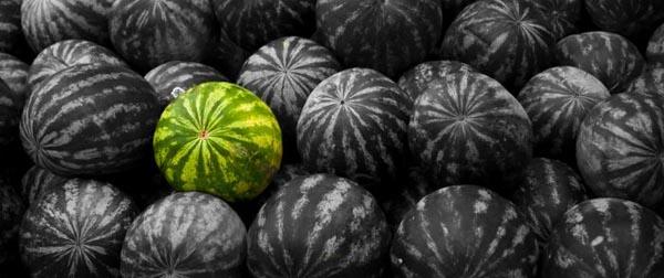 black-watermelon