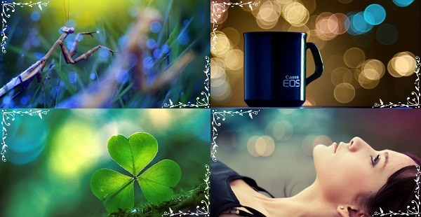 amazing-bokeh-photography