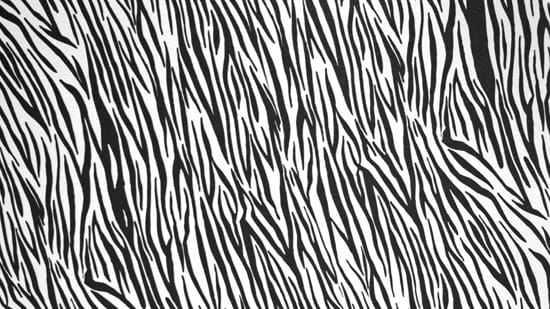 14-High-Resolution-Animal-Fur-Texture-Thumb14