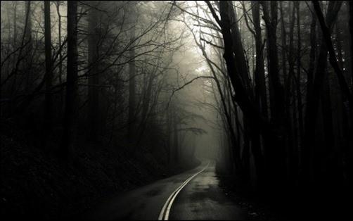 Dark-Road-Forest-black-desktop-wallpaper
