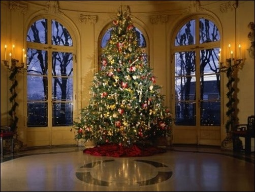 Decorated-Christmas-Tree-II