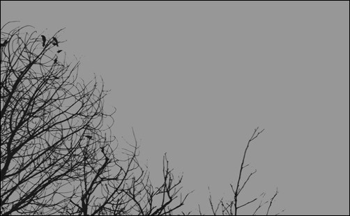 Gray-Day-minimal-wallpapers