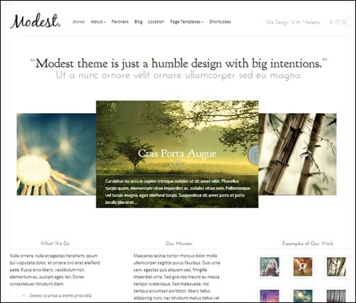 Modest-simple-wordpress-themes