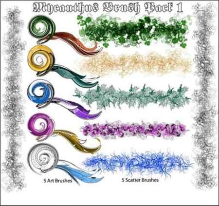Mycanthus-Brush-Pack-I-illustrator-brush