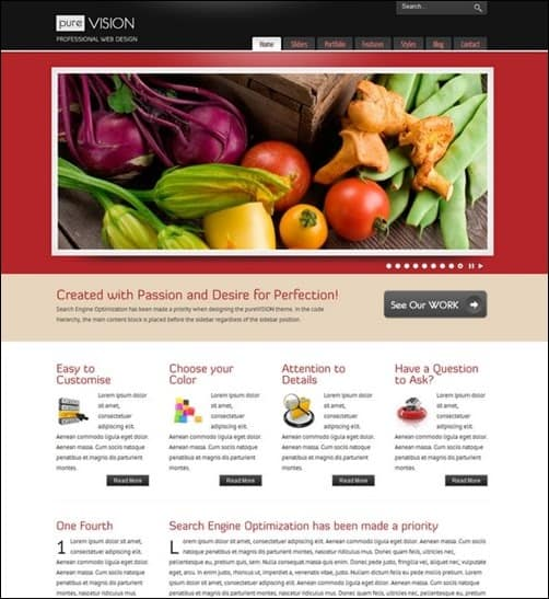 PureVISION wordpress business themes