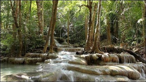 Thai-Fall-1