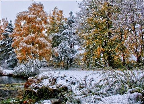 Winter-Scene-winter-desktop-backgrounds