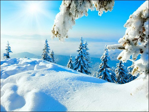 Winter-Sun-winter-wallpaper-for-computer