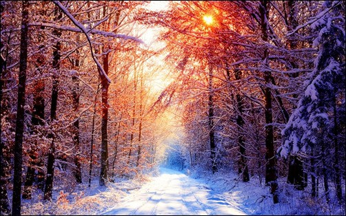 Winter-Wallpaper-II-winter-backgrounds