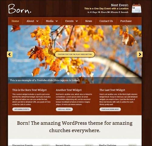 born wordpress church themes