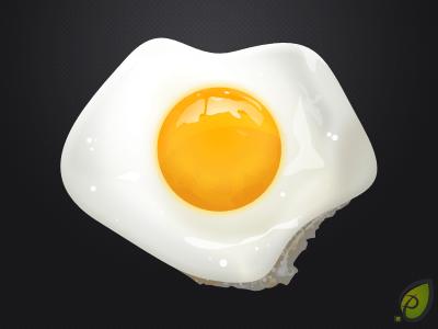 Fried Egg Illustration