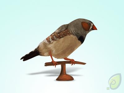 Little Bird Icon – Free PSD