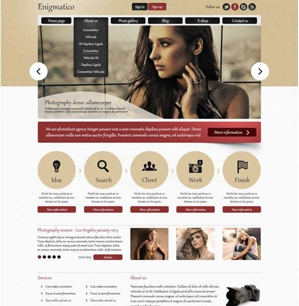 Enigmatico Photo Agency PSD Website