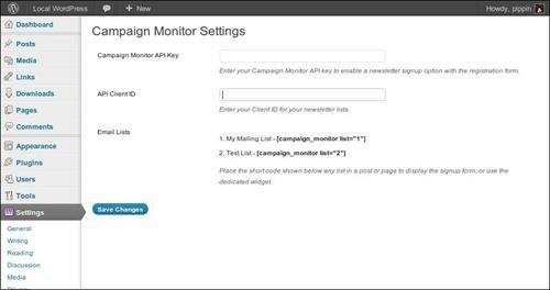 simple-campaign wordpress newsletter plugins