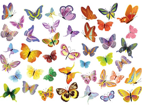 Set of Beautiful Unique Vector Butterflies