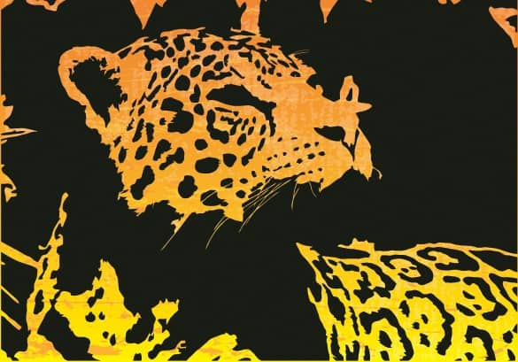 Exotic Jaguar Jungle Cat Vector