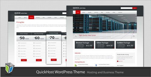 Secure hosting servers theme