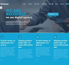 Neosense wordpress theme