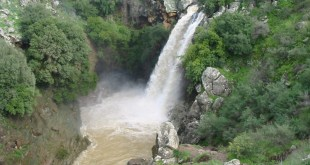 Saar_River_Waterfall_Golan_Heights Photo:אורנה לוטן