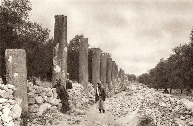 Columns along road in Samaria . Photo: 1925